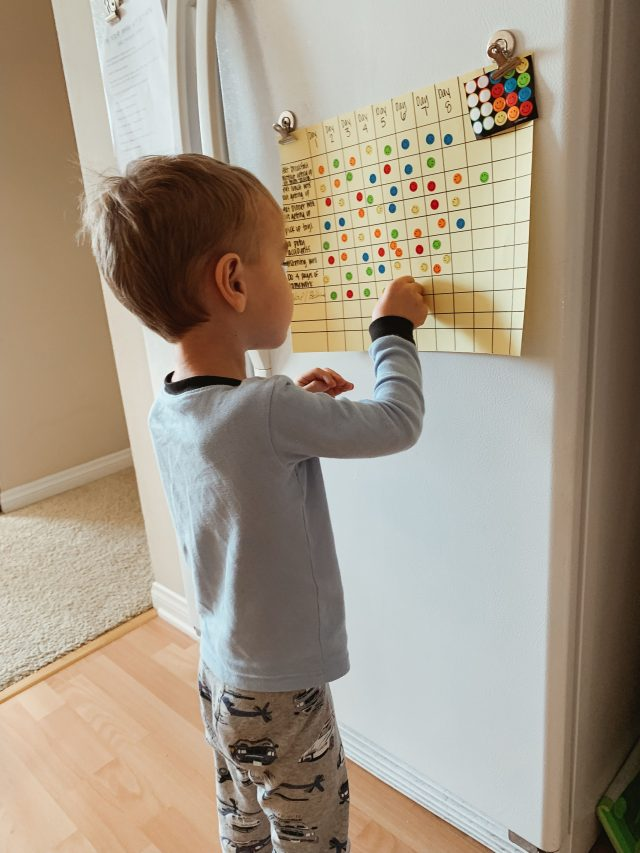 Teaching Your Toddler Proper Behavior With Positive Reinforcement